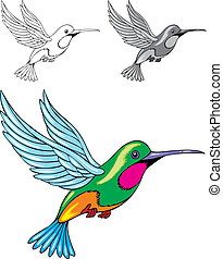illustrated hummingbird - illustrated color and black and...