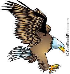 nice eagle - illustrated nice eagle isolated on white...