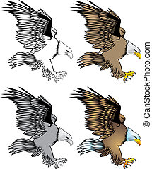 nice eagle - illustrated nice eagle isolated on white ...