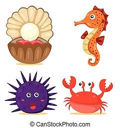 illustrateur, animal mer