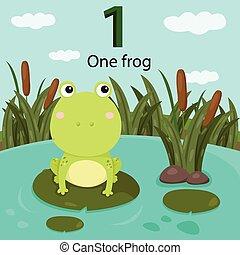 illustrateur, nombre, grenouille, une