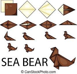 illustrateur, ours mer