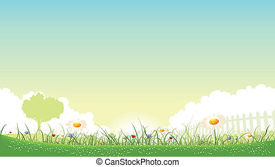 illustratie, van, een, mooi, tuin, van, bloemen, landscape, met, madeliefje, klaprozen, en, cornflowers, in, lente, of, zomer, jaargetijden