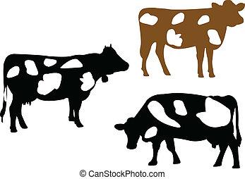 illustratie, van, koe