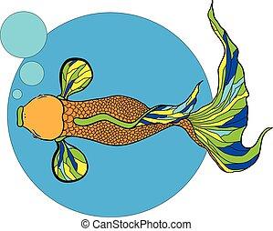 illustratie, van, koi karper, fish.