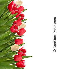 illustration., カラフルである, flowers., ベクトル, 背景, 休日