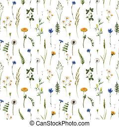 illustration., フィールド, flowers., 美しい, 野生, 水彩画, パターン, 夏, 手, 株, 引かれる, seamless, 花