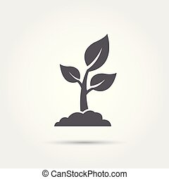 illustration., ベクトル, アイコン, 種, 実生植物, silhouette., プロセス