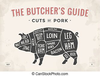 illustration., -, ベクトル, hand-drawn., 切口, 図, 型, 案, 印刷である, ガイド, pork., set., ポスター, 肉, 肉屋