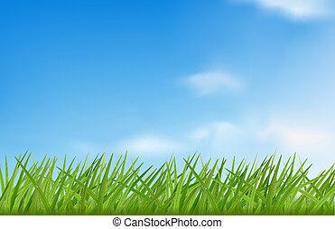 illustration., 空, に対して, バックグラウンド。, ベクトル, 緑の草