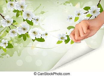 illustration., 自然, 手。, 開くこと, 木, ベクトル, 背景, ブランチ, 花