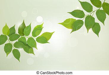 illustration., 自然, 葉, ベクトル, 緑の背景, 新たに
