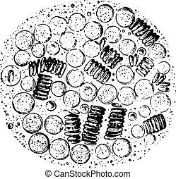 illustration., 辞書, labarthe, 型, 低下, -, leucocythemia, プレゼント, 1885., 刻まれる, 血, 面, 薬, dr, 普通