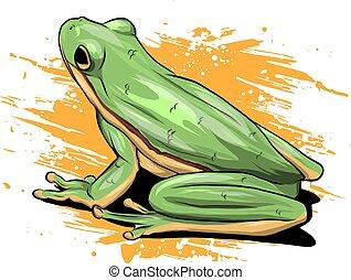 illustration a cartoon Green Frog drawing vector