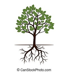 illustration., albero, vettore, verde, mette foglie, roots.