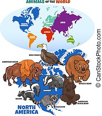 illustration, américain, dessin animé, animaux, pédagogique, nord