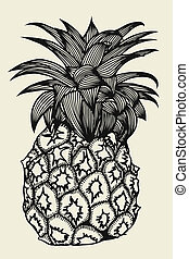 illustration, ananas