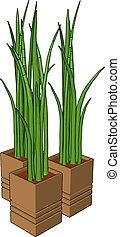 illustration, arrière-plan., vecteur, blanc, herbe, pot