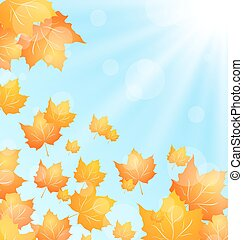 Autumn Background with Flying Maple