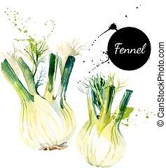 illustration., banner., acuarela, hierbas, vector, especias,...