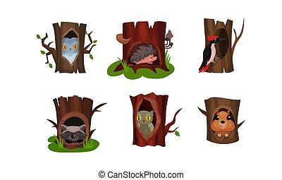 illustration, blanc, vecteur, arbre, peu, forêt, animaux, hollows, mignon, isolé, fond, ensemble, oiseaux