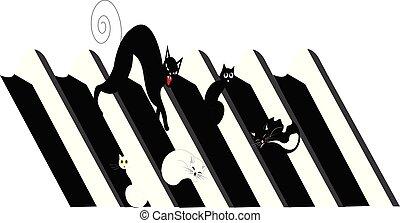 illustration, chats, blanc, toit, noir, maison