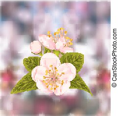 Cherry Blossom, Blur Nature Background