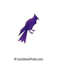 illustration, coloré, conception, gabarit, vecteur, oiseau