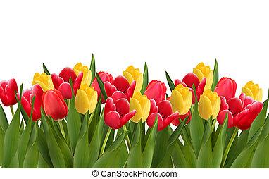 illustration., colorido, flowers., vector, plano de fondo, feriado