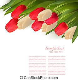 illustration., coloridos, flowers., vetorial, fundo, feriado