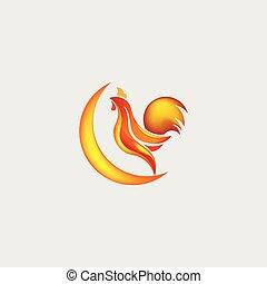 illustration, coq, vecteur, conception, gabarit, logo