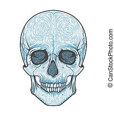 illustration., cranio, blackwork., style.tattoo, mão, boho, vetorial, human, desenhado, tribal