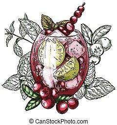 illustration, croquis, mojito, cocktail