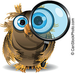 curious owl - illustration curious owl with a magnifying...