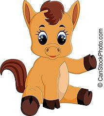 Cute baby horse sitting