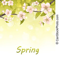 Cute Branches of Cherry Blossom Tree, Natural Background