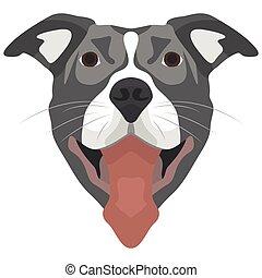 Illustration Dog Pitbull