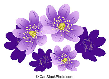 purple flower - illustration drawing of purple flower in...