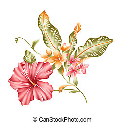 flower - illustration drawing of red flower in a white ...