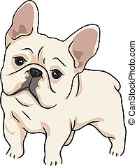 Illustration Featuring a Cute and Curious French Bulldog