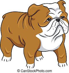 Illustration Featuring a Cute English Bulldog
