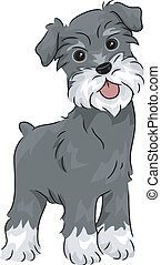 Miniature Schnauzer - Illustration Featuring a Miniature...