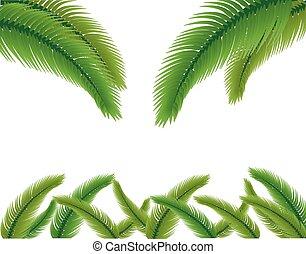 illustration., folhas, experiência., vetorial, palma, branca
