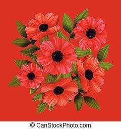 illustration., fondo., flowers., vettore, papaveri, rosso