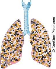 Illustration, fumeurs, poumons
