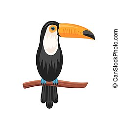 Funny Toucan Sitting on Branch, Exotic Bird Isolated