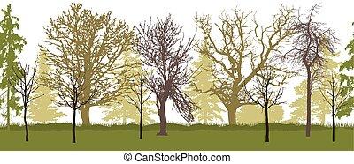illustration., garden), パターン, seamless, 木, silhouette., (spring, ベクトル, 裸