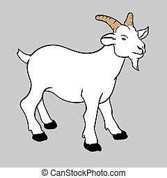 illustration goat vector