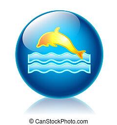 Dolphin glossy icon