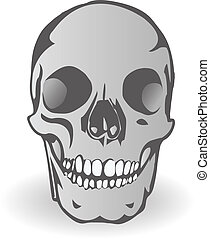 illustration, il, crâne, personne, vecteur